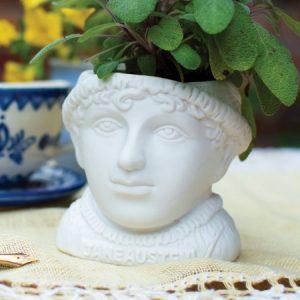 Jane Austen -kukkaruukku